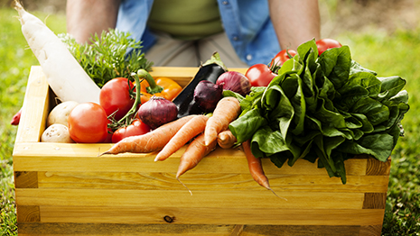 ירקות טריים על מגש